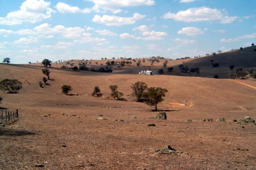 Cootamundra Farm